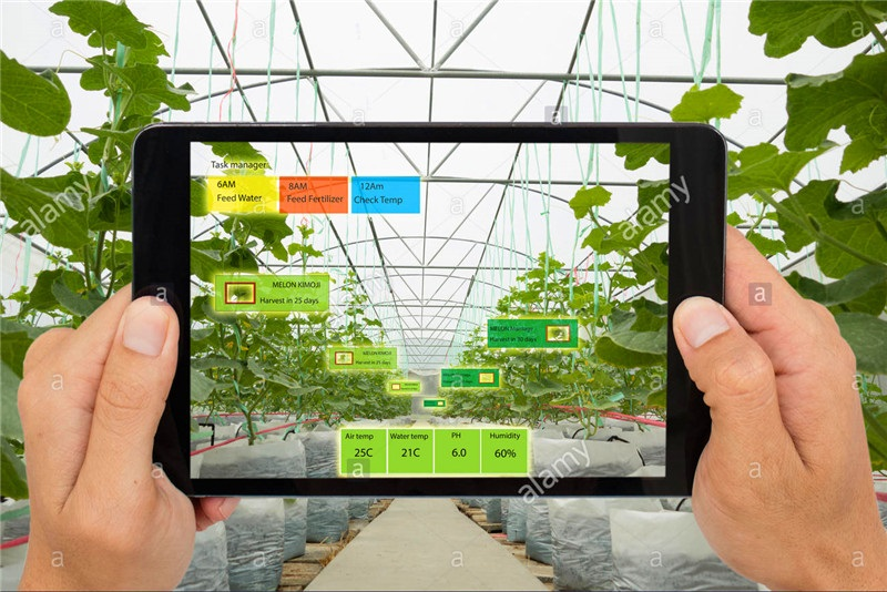 smart-agriculture-concept-agronomist-or-farmer-use-artificia
