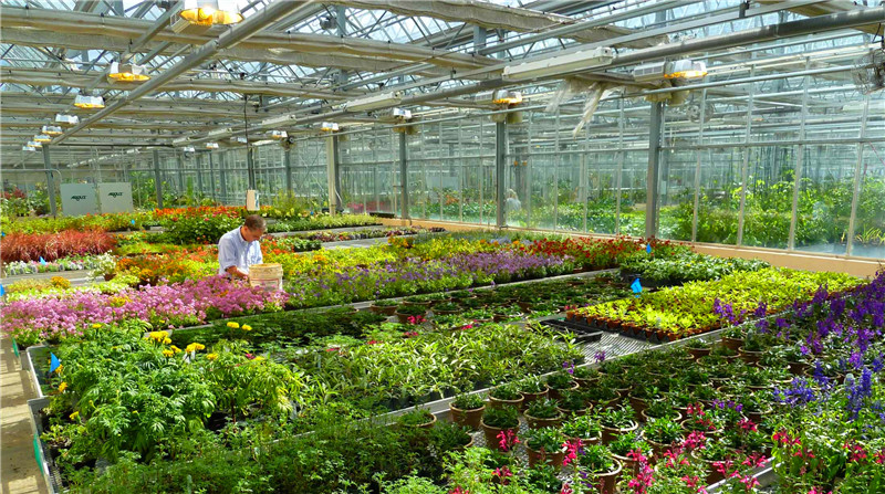 n-recommendation-greenhouse-ventilation-how-to-calculate.jpg